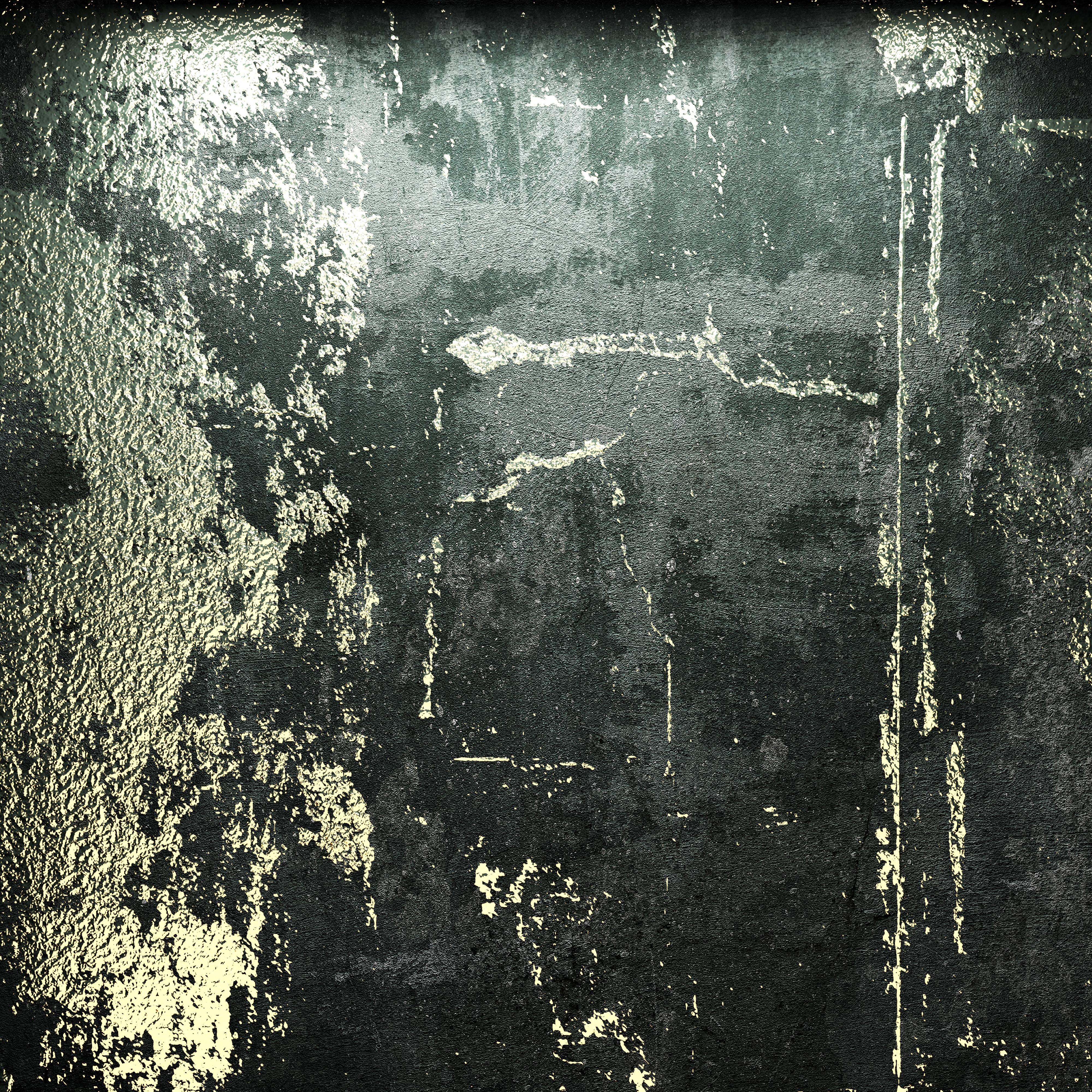 02G33197